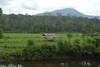 Hutan Desa Lubuk Beringin yang dijaga dengan baik oleh masyarakat Lubuk Beringin Foto Heriyadi. DOk KKI Warsi