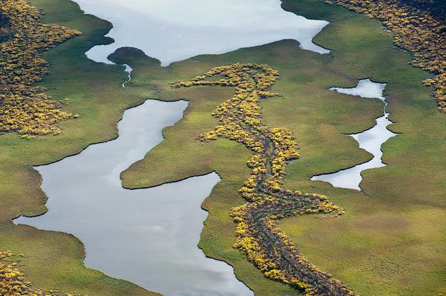 Aerial view of Rapa delta, Sarek N.P.