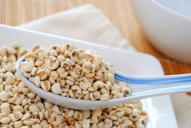 Dried barley seeds as food ingredients