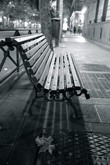 Bench and leaf