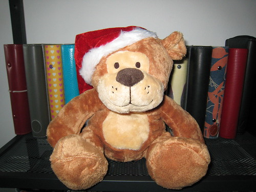 Santa Bear is coming to town
