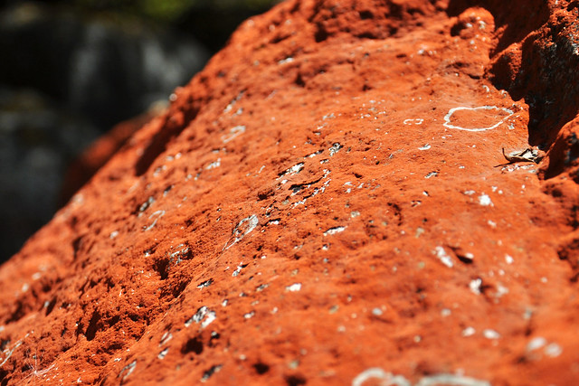 毕棚沟·红石
