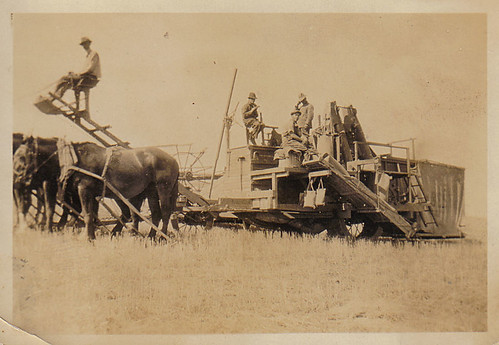 horse drawn field work