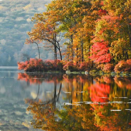 Fotografia in autunno ecco le idee da sfruttare foto for Semplici paesaggi