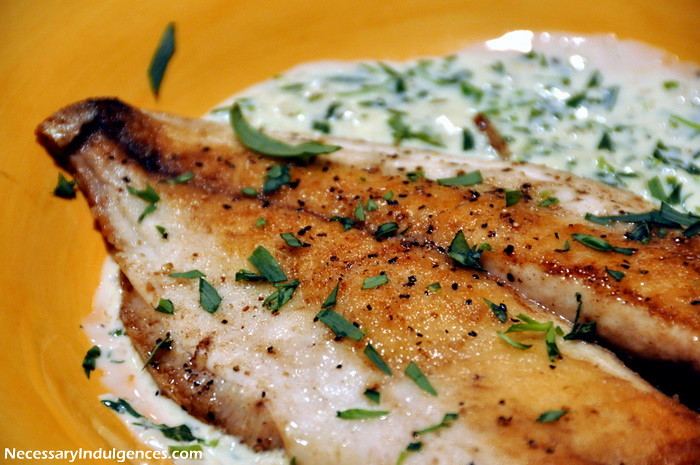 Pompano with Tarragon Cream Sauce