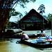 Yanamono country, Amazon, Peru-szúnyogháló