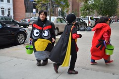 Angry Birds And Robin
