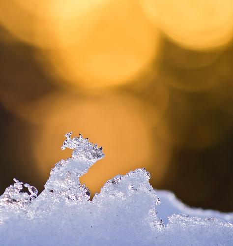morning winter snow sunrise lightroom sonya77