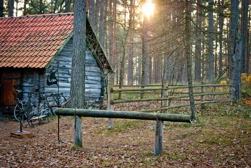 a dreamy place....В воздухе витает волшебство.  DSC_9101