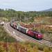 Comboio Internacional n.º 48810 - Marmeleira by valeriodossantos