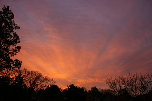 sunrise sonya700 sony16105