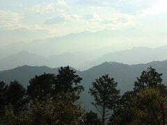 高尾山20111124-077