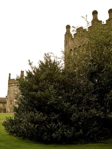 Kilkenny Castle 06
