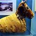 Small photo of Mummified Bull