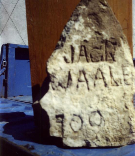 Waale Jack
