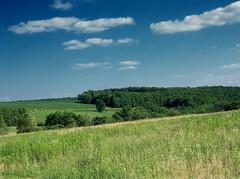 Hillside (1)