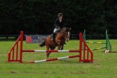 dog agility(0.0), physical exercise(0.0), animal sports(1.0), equestrianism(1.0), english riding(1.0), modern pentathlon(1.0), eventing(1.0), show jumping(1.0), hunt seat(1.0), equestrian sport(1.0), sports(1.0), recreation(1.0), outdoor recreation(1.0), hurdle(1.0), equitation(1.0), horse(1.0), person(1.0),