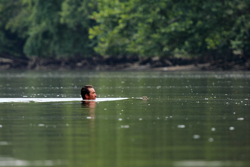 Man Swimming in the Anacostia