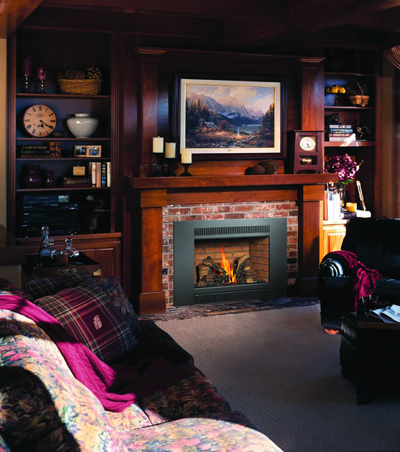 Fireplace Distributors of Nevada offers an excellent selection of fireplaces