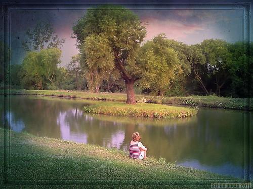 summer lake landscape abend sommer szép szgabi