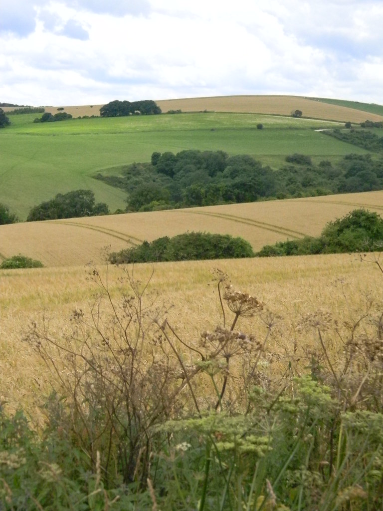 View Amberley to Pulborough