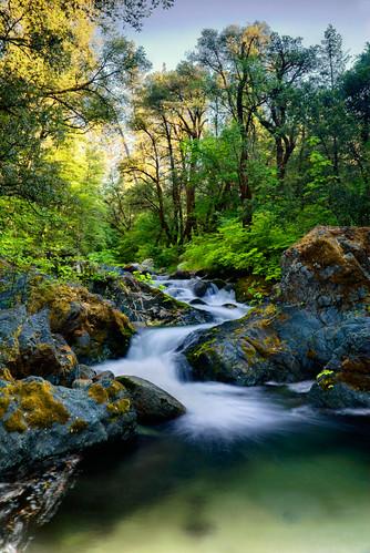 park longexposure nature water northerncalifornia forest waterfall nikon filter lee nd tropical d200 redding 18200 whiskeytown brandycreek