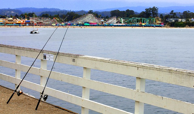 Fishing off the santa cruz pier flickr photo sharing for Santa cruz fishing report