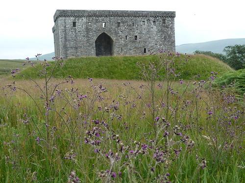 Landscape View, Hermitage Castle