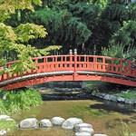 ภาพของ Jardin japonais. france pont boulognebillancourt jardinjaponais dalbera jardinalbertkhan