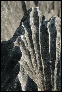 Tsingy closeup