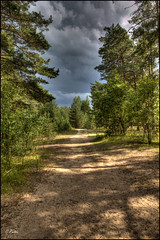 Road to the Storm