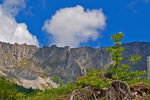 blue trees sky mountain color rock clouds landscape geotagged austria bush scenery styria felsen veitsch mygearandme mygearandmepremium