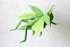Paper Insect 32 Photos | flying grasshopper | 547