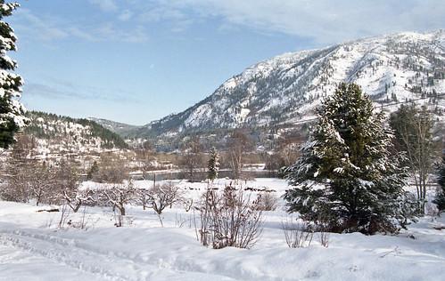 winter snow canada day kootenay castlegar pentaxlife projectweather fujisuperhg100film