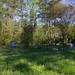Anderson-Harrison-Slade Family Cemetery (#103)