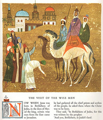 The visit of the wise man (camel)