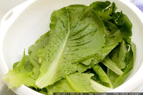 romaine lettuce c/o jim craig