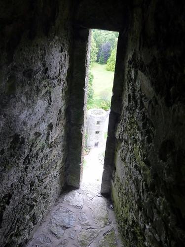 Window, Blarney Castle, Ireland