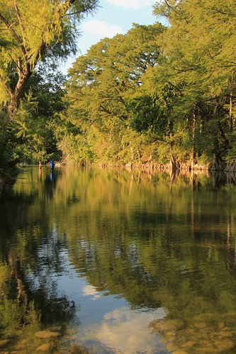 park trees reflection water river fishing texas cypress guadalupe newbraunfels guadaluperiver
