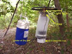 Mosquito traps, CDC Miniature Light Traps