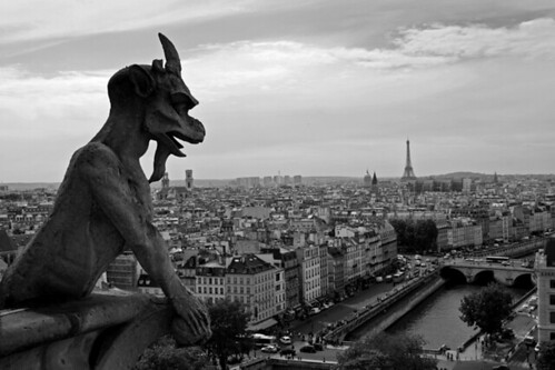 View from Notre Dame Cathedral - Paris