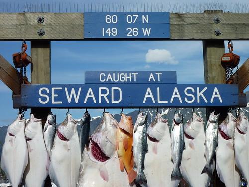 USA, Alaska, Seward - visvangst