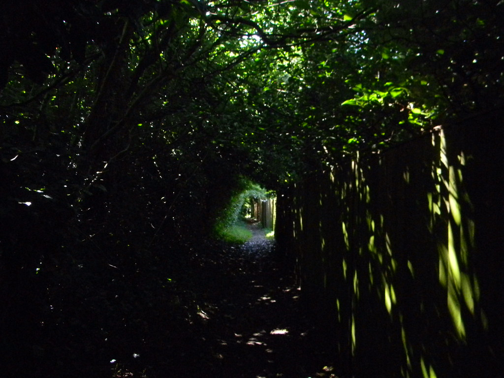 A galaxy is born? No. Just a walk beside a fence. Merstham to Tattenham Corner
