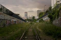 La Petite Ceinture // Parisian Small Belt Railway