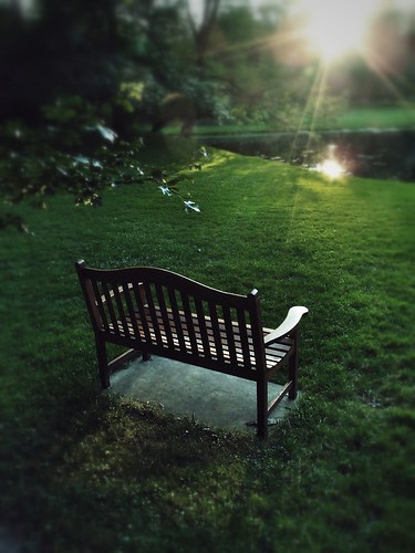 sunset bench michigan polarizer dowgardens olympusxz1 processedonipad