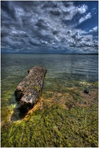 sea sky seaweed nature clouds canon eos poland polska natura efs hdr 1022 przyroda marcin gdynia orłowo morze chmury niebo 40d wodorosty colorphotoaward gawronski