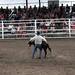 Sarpy Fair Rodeo 448