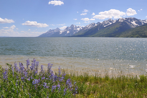 Tetons Across Lake