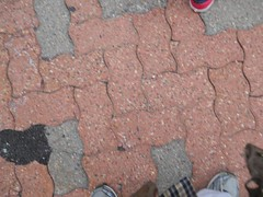 Photo Walk 9-29