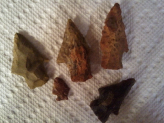 East Texas Arrowheads 7 10 11 Finds Flickr Photo Sharing